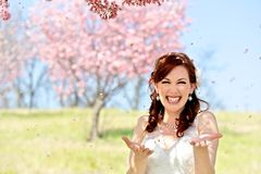Bride Showered by Cherry Blossom Petals Royalty Free Stock Photo