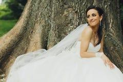 Bride sits behind an old huge tree Stock Image