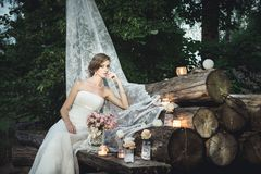 Bride sitting elegantly on the pile of logs decorated royalty free stock photos