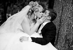Bride sitting on groom legs and kissing him passionately Stock Images