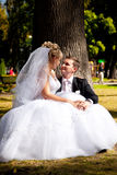 Bride sitting on grooms legs under tree at park Stock Image