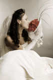 Bride smelling the fragrance of roses royalty free stock images