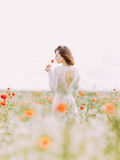 The bride is smelling the poppy among flowers in the field. The back view. Stock Images