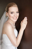 Bride smiling Stock Images