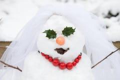 Bride snow girl Stock Photos