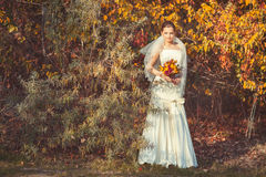 Bride standing in autumn park. Beautiful bride in a wedding dress standing in autumn park and holding wedding bouquet in hands Royalty Free Stock Photos