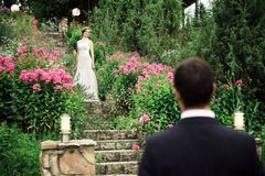 Bride standing up the stairs among the pink flowers stock photos