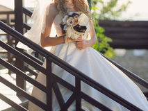 Bride in Sunset Light Royalty Free Stock Photo
