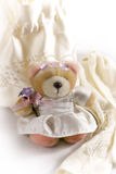 Bride teddy bear Royalty Free Stock Photo