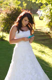 Bride texting on phone Stock Photos