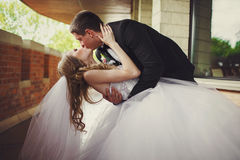 Bride touches groom's head tenderly while he bends her over stan Stock Photography