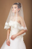 Bride with Transparent Wedding Veil Royalty Free Stock Photography