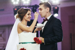 Bride treat a fiance with a wedding cake Stock Photography