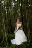 Bride Tree. A bride holding her bouquet of flowers Stock Photo