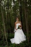 Bride Tree Stock Photo
