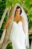 Bride In Tree Royalty Free Stock Photos
