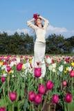 Bride in tulips field Stock Photos