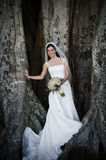 Bride under tree. A beautiful smiling bride standing under a large Banyan tree holding bouquet royalty free stock images