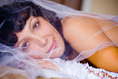 Bride under veil. Beautiful young bride looking under veil Royalty Free Stock Photography