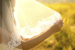 Bride under veil. Asian bride under veil at outdoor in a morning surrounding by golden sunlight Royalty Free Stock Photos