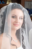 Bride under a veil Stock Image