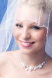 Bride under a veil Stock Photography