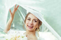 Bride under veil Royalty Free Stock Images