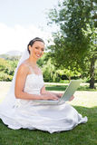 Bride using laptop in garden Stock Photography