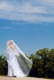 Bride and veil. Bride plays with the veil Stock Photo