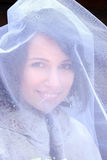 Bride in veil Royalty Free Stock Photo