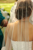 Bride and veil. Bride royalty free stock photography