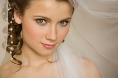 Bride with the veil Stock Image
