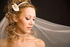 Bride with the veil Stock Photography