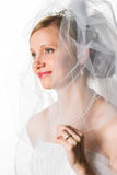 Bride and veil Stock Photography