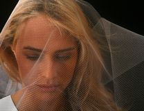 Bride in Veil. Beautiful Bride in Veil on Black Background royalty free stock image