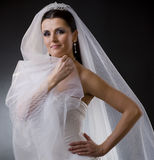 Bride in veil. Portrait of a smiling young bride wearing a white wedding dress, holding her veil lloking at camera Stock Photos