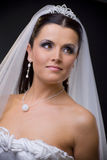Bride in veil. Closeup portrait of a young bride wearing white wedding veil, smiling Stock Photos