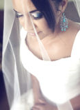 Bride with a veil Stock Images
