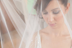 Bride veil Royalty Free Stock Photo