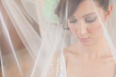 Bride veil royalty free stock photo