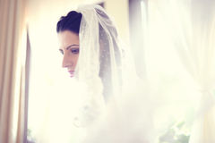 Bride with veil Royalty Free Stock Images