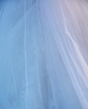 Bride veil Stock Image