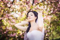 Bride, veil, trees, flowering Stock Photography