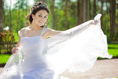 Bride with veil Stock Images