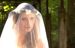 Bride with veil. Young woman with white veil in forest stock photos