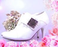 Bride vintage shoes with pink flowers frame. White wedding vintage boots with pink flowers frame on magenta lighted background Royalty Free Stock Image