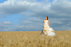 Bride walking in a field Royalty Free Stock Photo