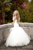 Bride walking in the park. Beautiful bride with white hair walking in the park Royalty Free Stock Image