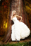 Bride walking in the park. Beautiful bride with white hair walking in the park Royalty Free Stock Images