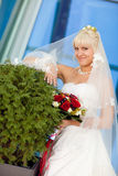 Bride by the wall Stock Photography